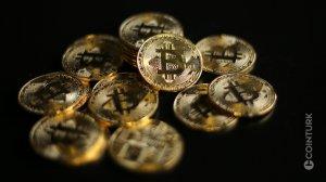 Sacramento Kings CTO'su: Bitcoin Fiyatı Yükselince Harcamalar Kesildi!