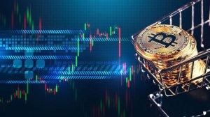 İki Güney Amerika Ülkesinde Bitcoin İşlemlerinde Rekor Kırıldı