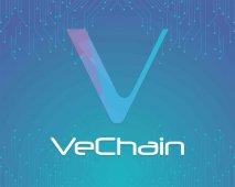 VeChain Cüzdanlarına Saldırı Yapıldı: 1,1 Milyar VET Çalındı!