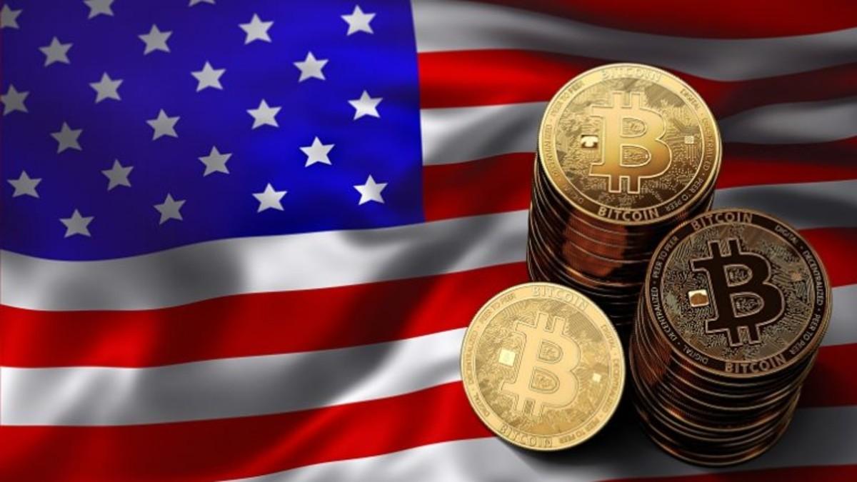 Milyonlarca bitcoins dog racing betting strategy
