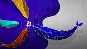 Bitcoin (BTC) Balinalarının Yeni Hedefi Belli Oldu
