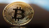 Bitcoin Düşüşünü Nokta Atışıyla Bilen Analist, Tek Kripto Para Yatırımını Duyurdu