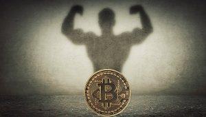 Bitcoin (BTC) Fiyatının 50.000 Dolar Rekoru Bile Onları Durdurmadı: Yeni Alım Açıklandı