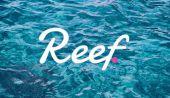 Reef Nedir?