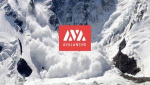 AVAX Yorum: Avalanche Ağında Sistemsel Hata: Ağ Neredeyse Durma Noktasına Geldi!