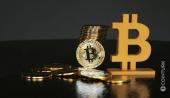Tüm Yatırım Varlıklarının Yüzde 1'i Bitcoin'e Yatırılırsa Ne Olur?