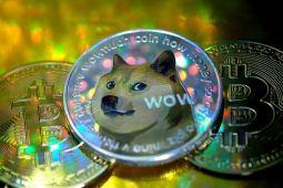 Galaxy Digital CEO'su Mike Novogratz, Mark Cuban'ın Dogecoin Hamlesini Hatalı Buldu