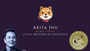 Akita Inu: Sıradaki Dogecoin (DOGE) Olabilir mi?