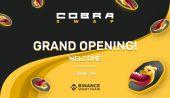 Binance Smart Chain'deki Yeni Otomatik Piyasa Yapıcı: CobraSwap