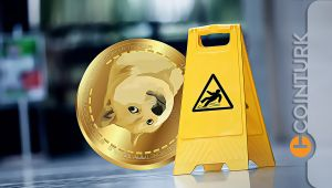İlk On İçinde En Çok DOGE Değer Kaybetti: Shiba Inu ve Dogecoin Yükselecek Mi?