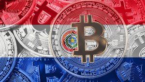 Paraguay'ın Bitcoin Tasarısı İddialarının Doğruluk Payı Var Mı?