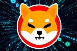 Shiba Inu Yorumları: SHIB, Coinbase Etkisini Arkasına Alarak Yükselişe İvme Kazandırıyor