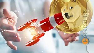 Dogecoin ve Alternatiflerinin Geleceği Ne Olacak? Shiba Inu (SHIB) ve Baby Doge Coin Analizi