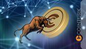 Popüler Analiste Göre 10 Kat Artması Beklenen Kripto Paralar! Az Bilinen İki Altcoin!