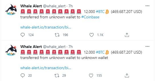 Whale Alert Bitcoin Transferi