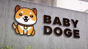 Baby Doge Coin Nedir, Ne Değildir? BabyDoge İncelemesi ve Dogecoin İle Arasındaki İlişki