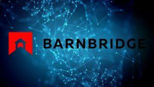 BarnBridge Coin Nedir?