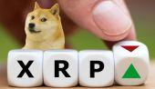 Dogecoin (DOGE) ve Ripple (XRP): Hangisine Yatırım Yapmak Daha Mantıklı?