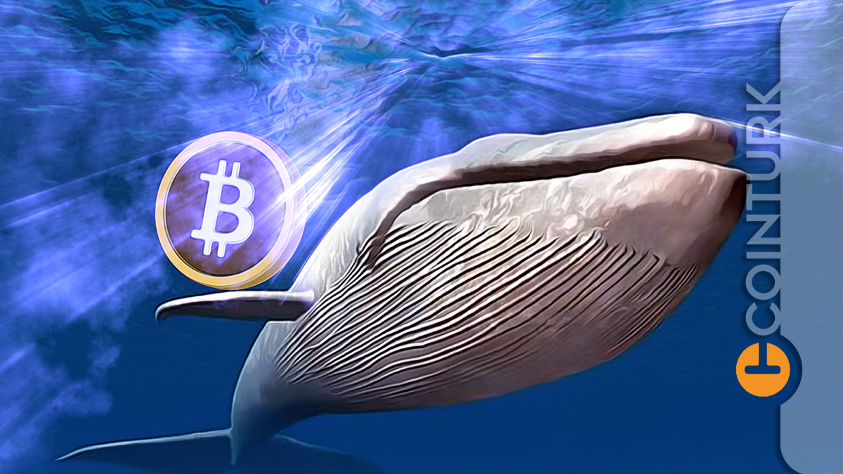 600 Milyon Dolarlık Bitcoin Transfer Edildi! Neler Oluyor?