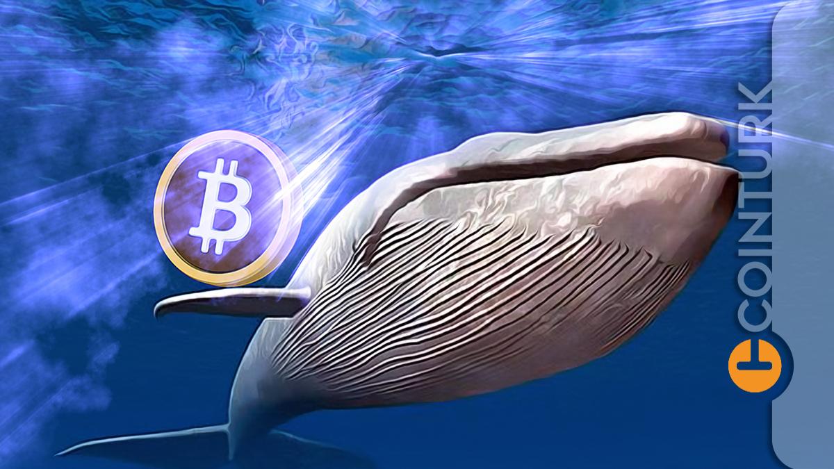 34.000 Bitcoin Bilinmeyen Cüzdanlar Arasında Transfer Edildi