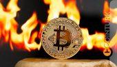 Bitcoin (BTC), 48.000 Doların Üzerinde! (Güncel Piyasa Analizi)