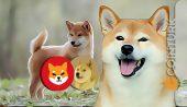 Shiba Inu (SHIB), Dogecoin (DOGE) ve Baby Dogecoin Fiyat Tahminleri! Merak Ettikleriniz!
