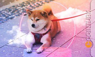 Robinhood CEO'sundan Shiba Inu Açıklaması! Shiba Inu Robinhood'da Listelenecek Mi?