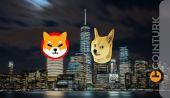 SHIB ve DOGE Fiyat Beklentileri Dudak Uçuklatıyor! Bu Seviyeler Mümkün Mü?